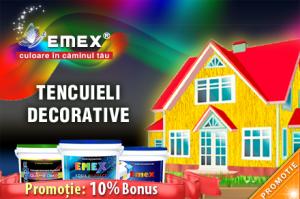 Promotie Tencuiala Decorativa
